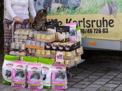 Spendenankunft Katzenhilfe Karlsruhe