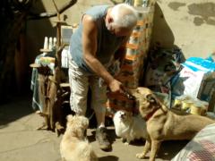 Spendenankunft Leben für Streuner 1