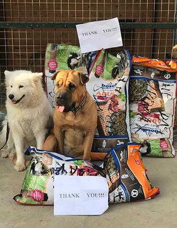 Spendenankunft-bei-Tierschutzhunde-Russland-e.V.
