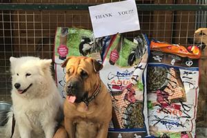 Spendenankunft-bei-Tierschutzhunde-Russland-e.V.-Beitragsbild