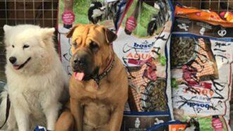 Tierschutz-Shop rief dazu auf russischen Fellnasen zu helfen und es kam eine Menge Futter zusammen.