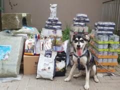 Spendenankunft Tierheim Karlsruhe