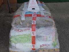 Spendenankunft Tierhilfe Nord 1
