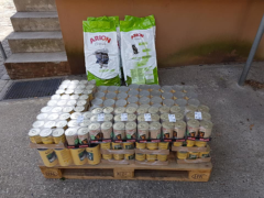 Spendenankunft Tierhilfe Nord 2