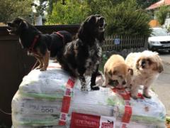 Spendenankunft Tierhilfe Weyarn-Waakirchen