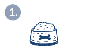 4-step-grafik-blau-mobil-napf