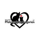 Katzenhilfe Pfotenschutz Bulgarien e.V.