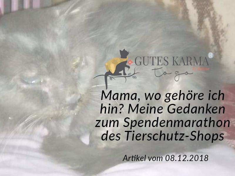 SM_Medienbeiträge_Gutes Karma_2018