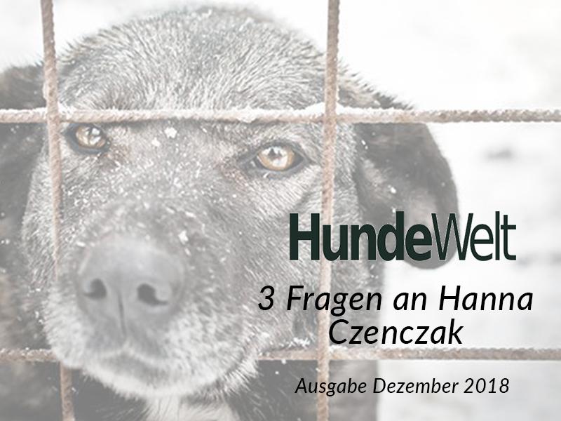 SM_Medienbeiträge_HundeWelt_2018