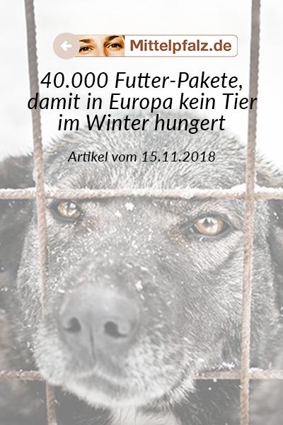 SM_Medienbeiträge_Mittelpfalz_2018