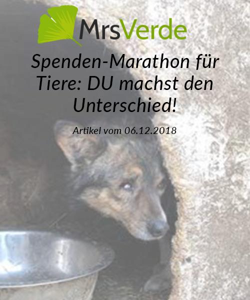 SM_Medienbeiträge_Mrs Verde 2018_neu