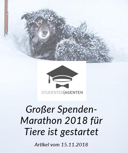 SM_Medienbeiträge_Studentenagenten 2018_neu