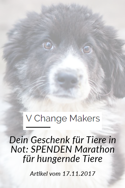 SM_Medienbeiträge_V Change Makers 2017
