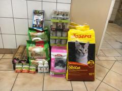 Spendenankunft Tierschutzverein Freital