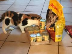 Spendenankunft Tierschutzverein Hann Münden
