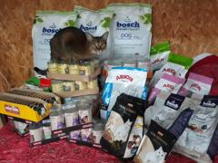 Spendenankunft Tierhilfe Fortuna
