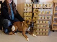 Tierschutzverein Franziskushof