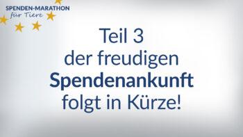 Spendenankunft_Teil 3_Vorschaubild