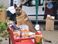 Spendenankunft Tierheim Marl 1