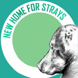 "Wunschliste ""New Home for Strays e. V."""