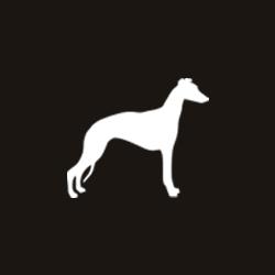 Tierschutz-Shop__Aktion_zum_Welt_Galgo_Tag_2019_Icon_Wunschliste_250x250.jpg