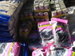 Spendenankunft Ein Zuhause für verlassene Tiere 1