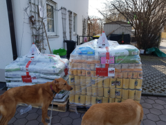 Spendenankunft Pentru Animale 2