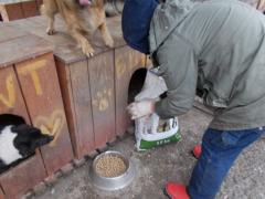 Spendenankunft Pro Animals Deutschland NEU 4