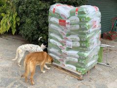 Spendenankunft_Zenias Tiere e.V. 3