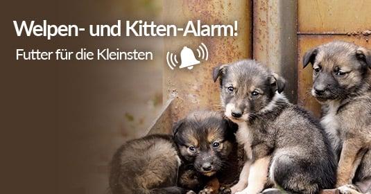 Tierschutz-Shop__Welpen_und_Kitten_Alarm_2019_Facebook_Share_535x280