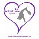 welpen-und-kitten-vereinslogo-animal-hope-romania
