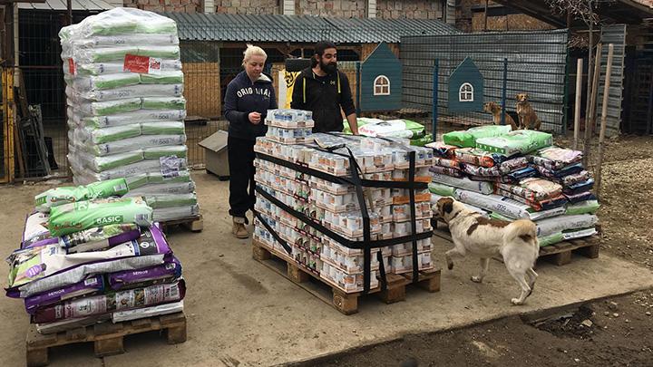 Spendenankunft Spenden-Marathon für Tiere 2018 Glück für alle Pfoten e.V. 1