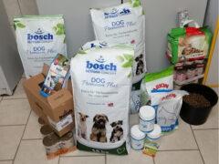 Spendenankunft_Tierschutzverein