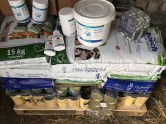 Spendenankunft_Yorkshire-Hilfe e.V 1