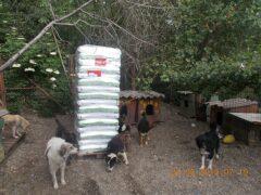 Spendenankunft_Pro Animals Deutschland e.V. 3