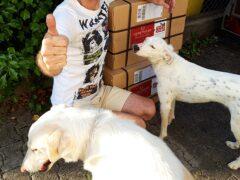Spendenankunft_Tierschutzverein Tierparlament e.V. Im Namen aller Tiere 3