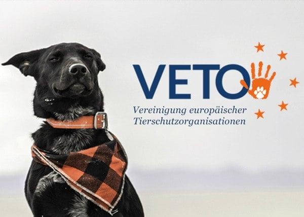 VETO-Vereinigung-koopiert-mit-TSS