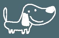 hund-newsletter-