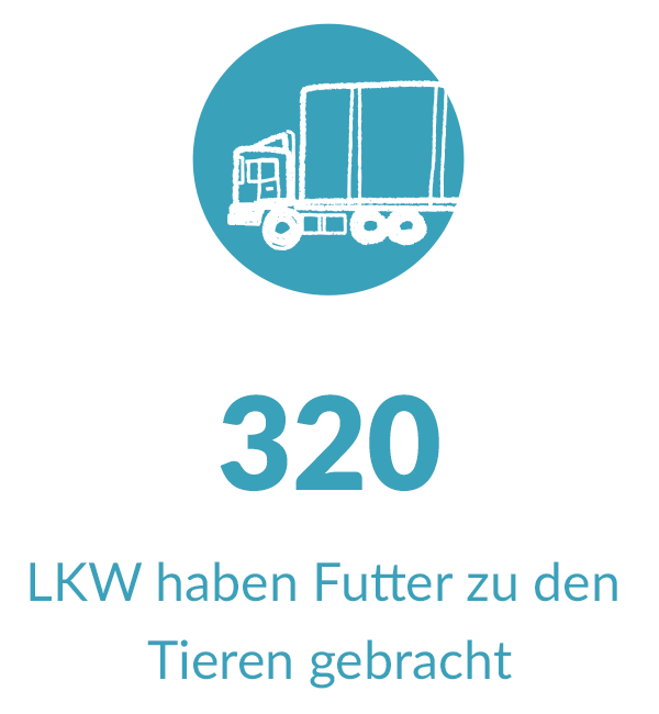 icon_mit_text_mobil_lkw