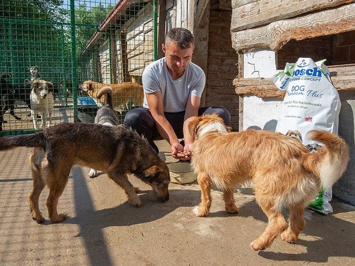 Lesika Hundehilfe Varazdin e.V.-Futterspendenankunft-Juli-2019-THdM Mai-Kroatien1neu