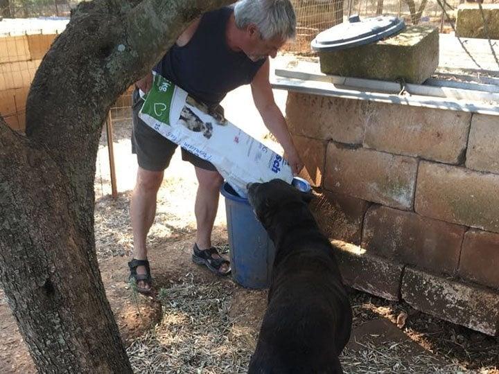 Paradies für Tiere e.V.-Futterspendenankunft-september 2019-Spendenaktion-Sommerloch-Italien (4)