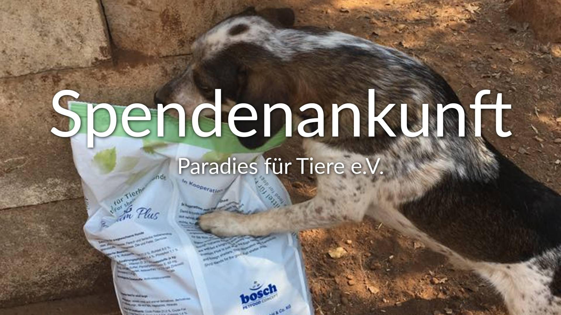 Paradies für Tiere e.V.-Futterspendenankunft-september 2019-Spendenaktion-Sommerloch-Italien VIDEO-1
