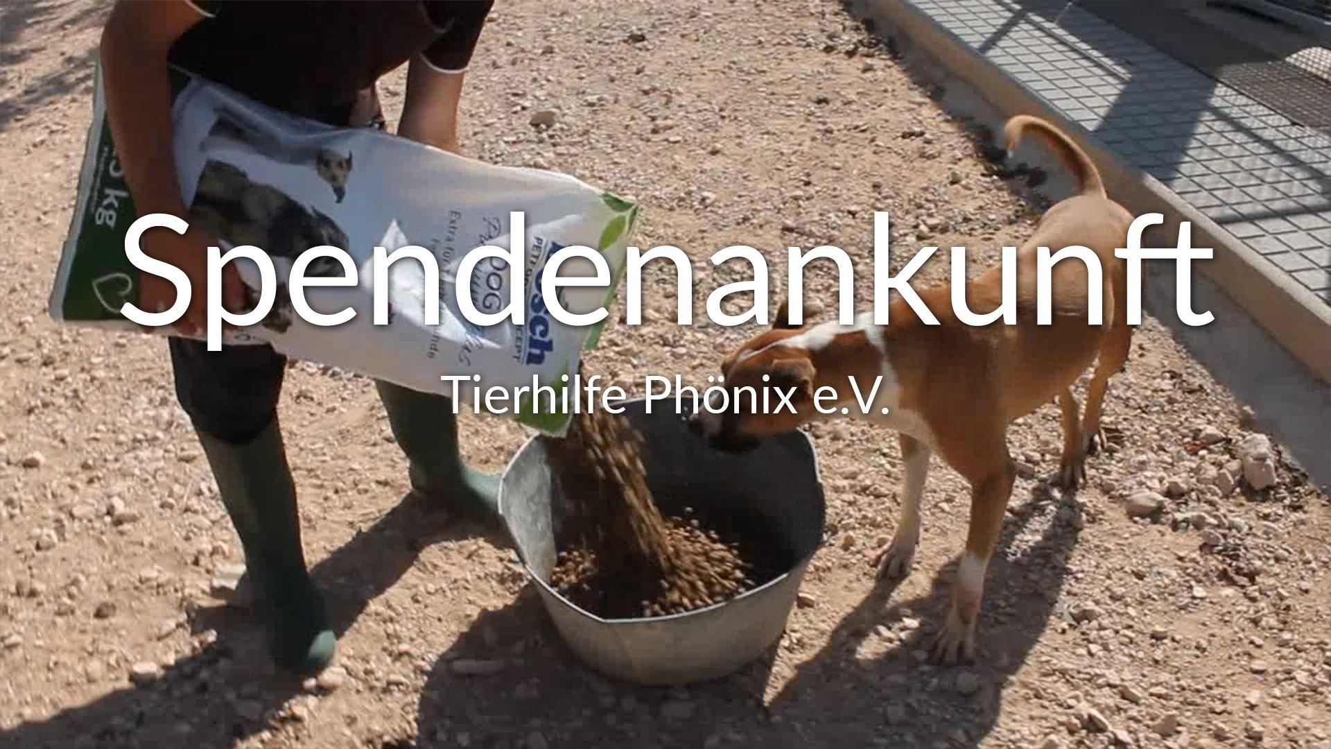 Tierhilfe Phönix e.V.-Futterspendenankunft-september 2019-Spendenaktion-Sommerloch-Spanien VIDEO-1