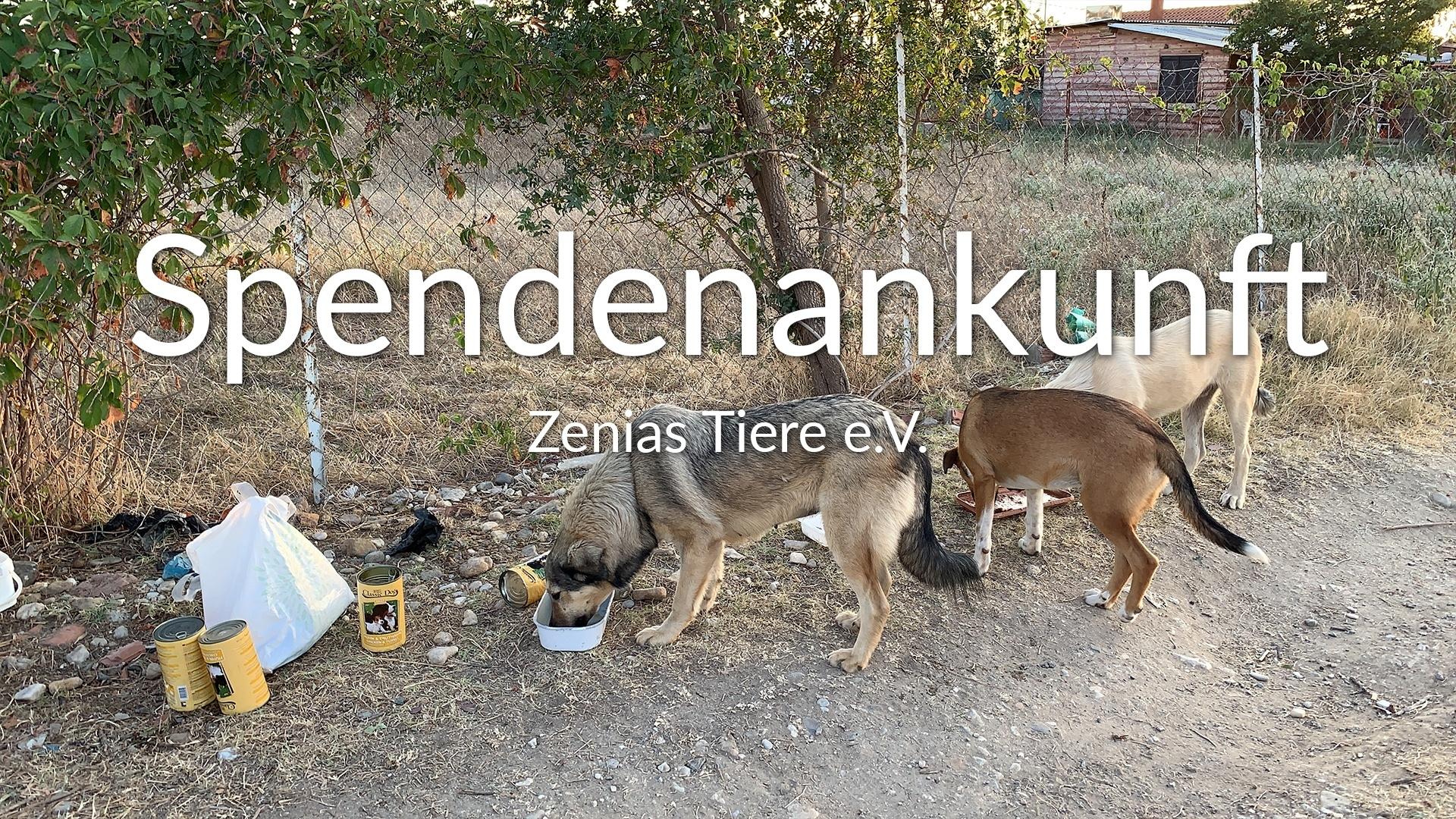 Zenias Tiere e.V.-Futterspendenankunft-september 2019-Spendenaktion-Sommerloch-Griechenland-VIDEO