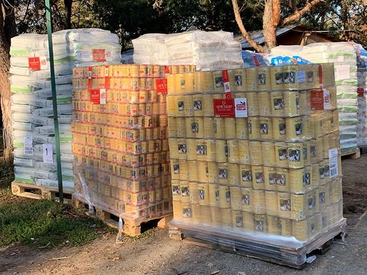 ProDogRomania e.V. -Futterspendenankunft-oktober 2019-Spendenaktion SOS Hilferuf aus Rumänien-Rumänien (5)