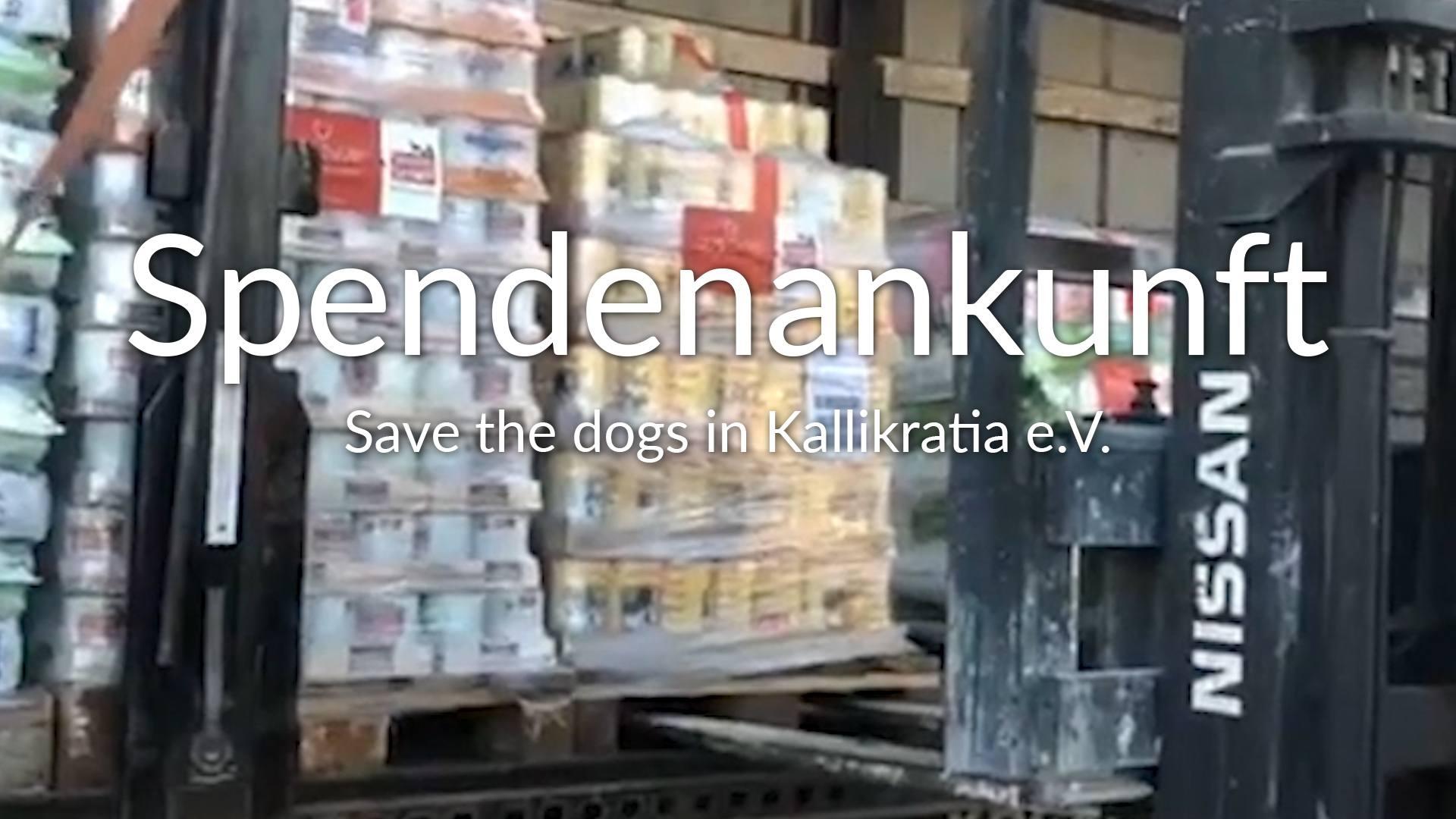Save the dogs in Kallikratia e.V.-Futterspendenankunft-oktober 2019-WL-Griechenland VIDEO
