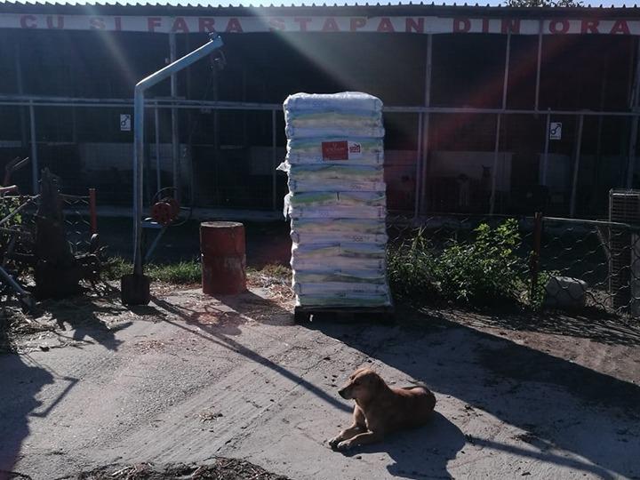 Tierschutz-Werkstatt e.V.-Futterspendenankunft-november 2019-Aktion SOS Hilferuf Rumänien-Rumänien (6)