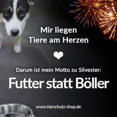 Tierschutz-Shop_Futter_statt_Boeller_2019_Facebook_Postvorlage_Sprueche_550x550