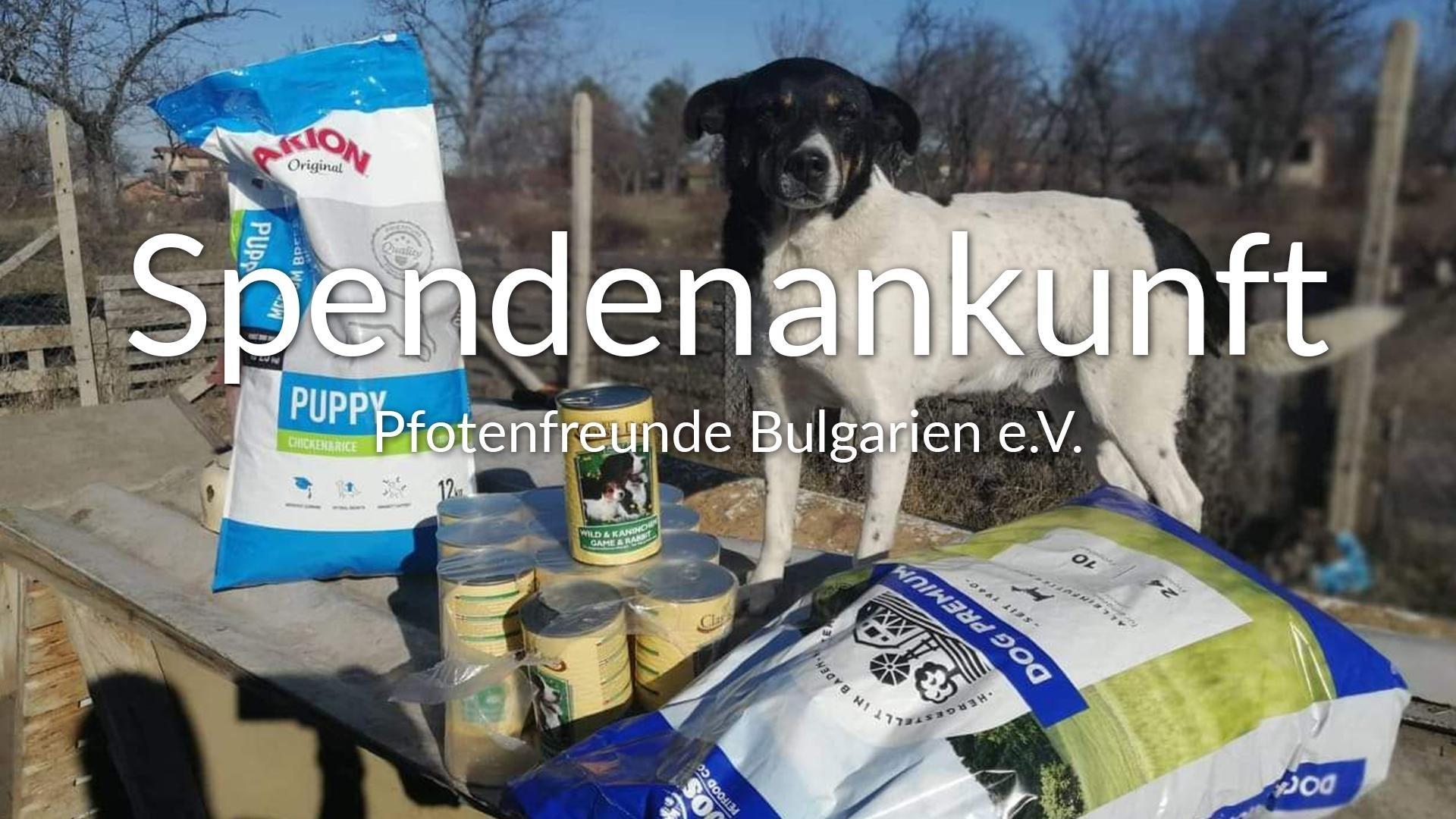 Pfotenfreunde Bulgarien e.V.-Futterspendenankunft-januar-2020-THdM Okt 19-Bulgarien-VIDEO