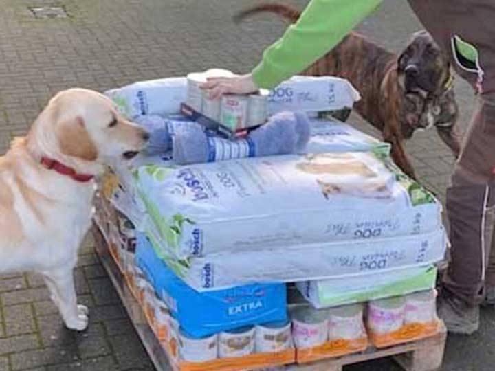 Tierheim Geldern -Futterspendenankunft-januar-2020-WL-Deutschland (2)